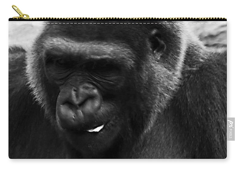 Chimpanzee Carry-all Pouch featuring the photograph Light Snack by Ken Frischkorn