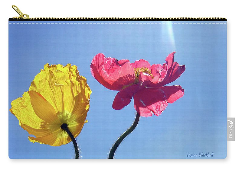Poppy Carry-all Pouch featuring the photograph Light Stream by Donna Blackhall