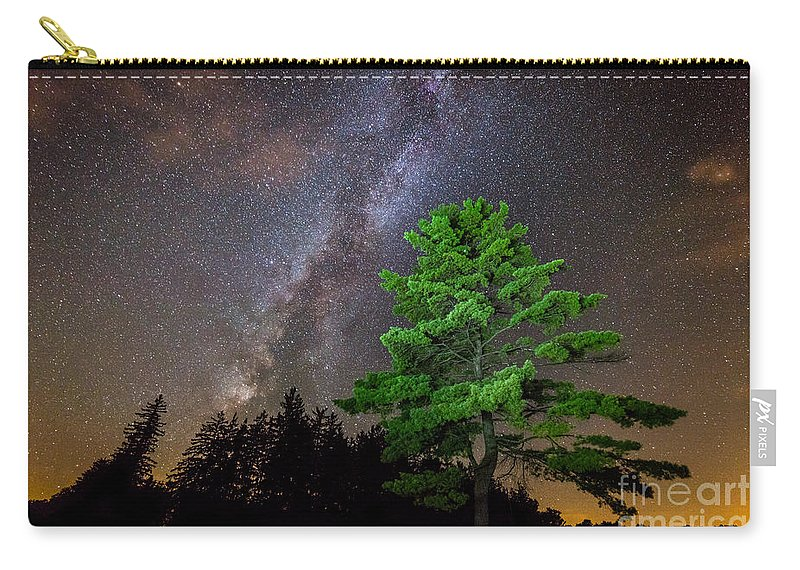 Tree Carry-all Pouch featuring the photograph Light Up Your Life by Michael Ver Sprill