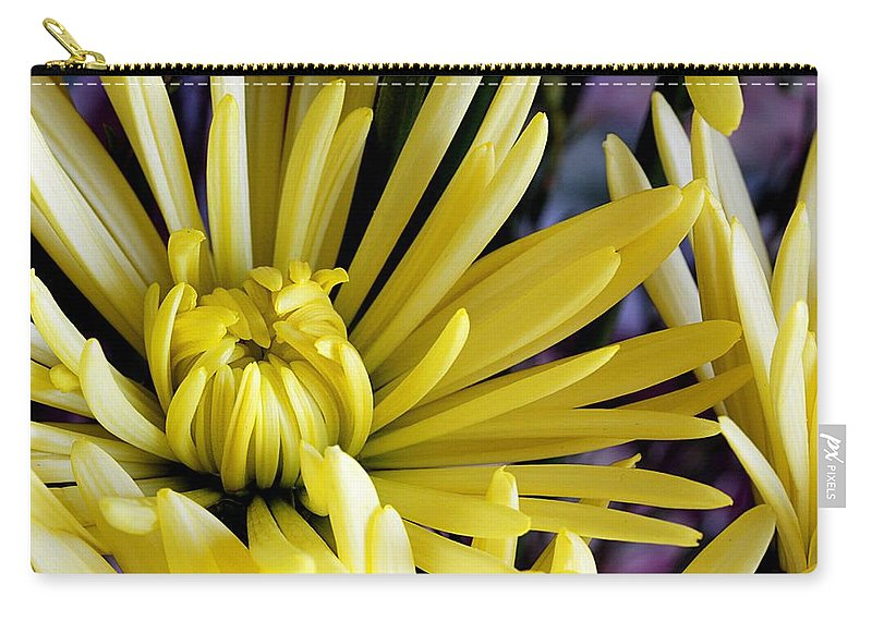 Flower Carry-all Pouch featuring the photograph Like Bombs Bursting In Air by Joe Kozlowski