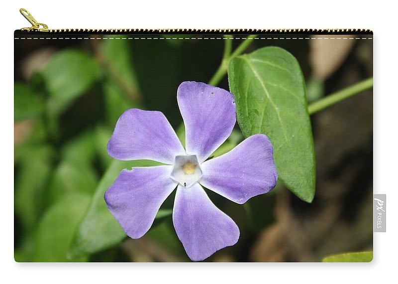 Vinca Herbacea Carry-all Pouch featuring the photograph Lilac Periwinkle by Taiche Acrylic Art