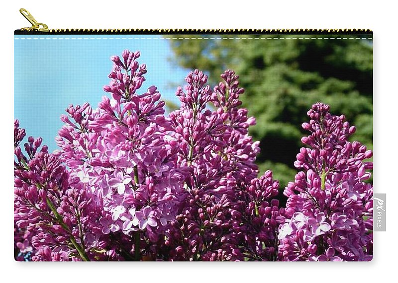 Lilacs- Horizontal Format Carry-all Pouch featuring the photograph Lilacs- Horizontal Format by Will Borden