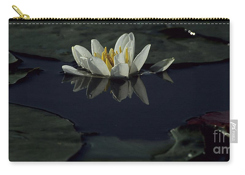 Lilly Carry-all Pouch featuring the photograph Lilly Of The Morning by Sharon Elliott