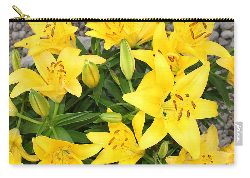Yellow Lilies Carry-all Pouch featuring the photograph Lily Gathering by Sylvia Thornton