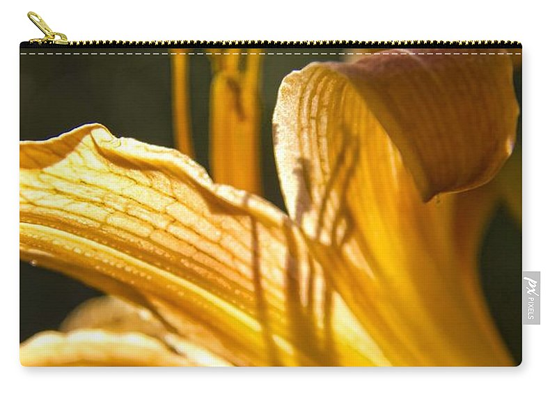 Lily Carry-all Pouch featuring the photograph Lily In The Yard by Daniel Sheldon
