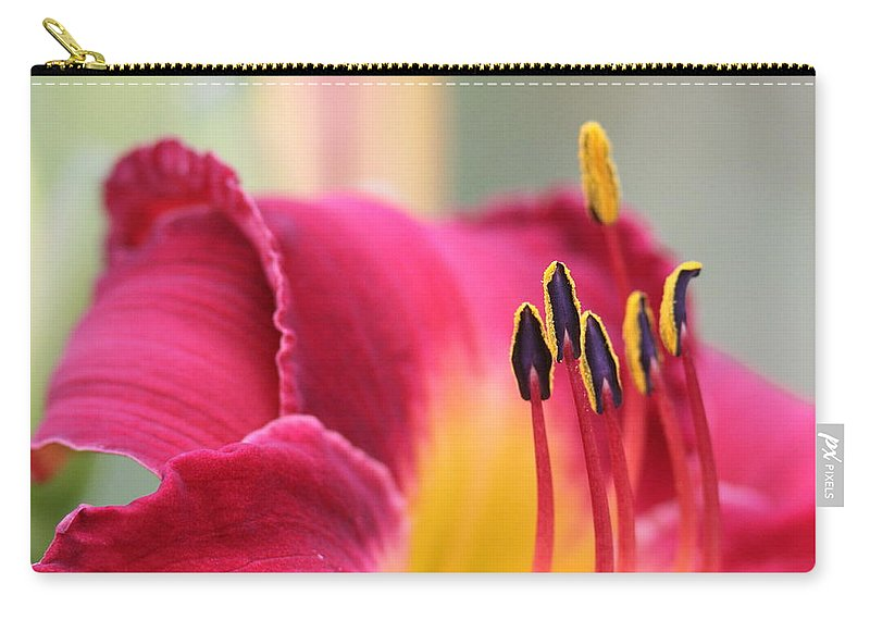 Lily Carry-all Pouch featuring the photograph Lily Photo - Flower - Rusty Red by Travis Truelove