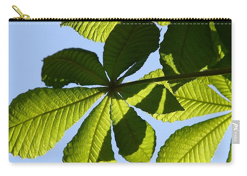 Lime Carry-all Pouch featuring the photograph Lime by Carol Lynch