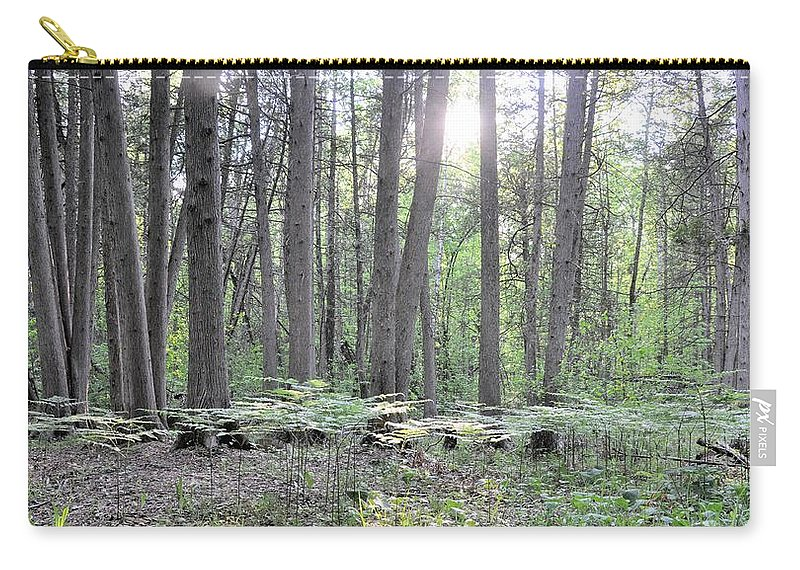 Limerick Forest Carry-all Pouch featuring the photograph Limerick Fern Understory by Valerie Kirkwood