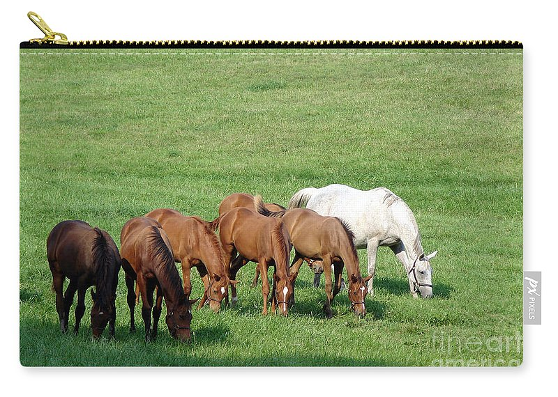Horse Carry-all Pouch featuring the photograph Line Feeding by Olivier Le Queinec