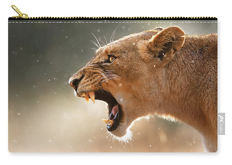 Lion Carry-all Pouch featuring the photograph Lioness Displaying Dangerous Teeth In A Rainstorm by Johan Swanepoel