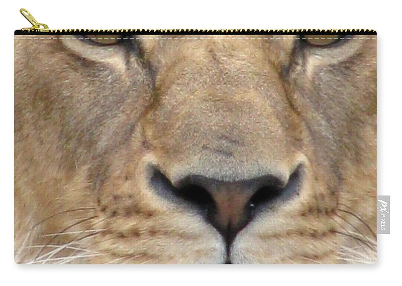 Lion Carry-all Pouch featuring the photograph Lioness Portrait by Pamela Critchlow