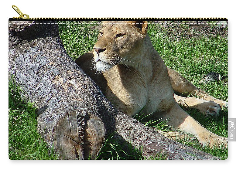 Lion Carry-all Pouch featuring the photograph Lioness2 by Gary Gingrich Galleries