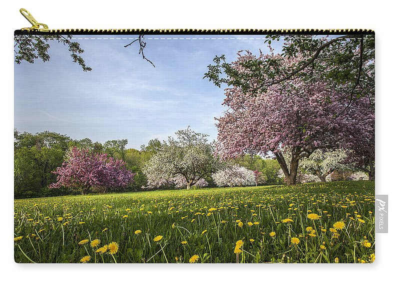 Www.cjschmit.com Carry-all Pouch featuring the photograph Lions Of The Lawn by CJ Schmit