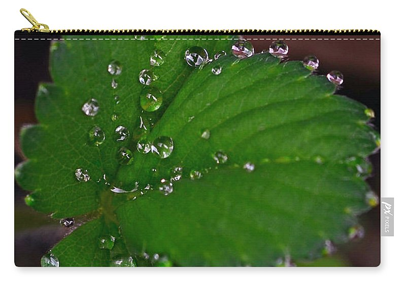 Liquid Pearls On Strawberry Leaves Carry-all Pouch featuring the photograph Liquid Pearls On Strawberry Leaves by Lisa Phillips