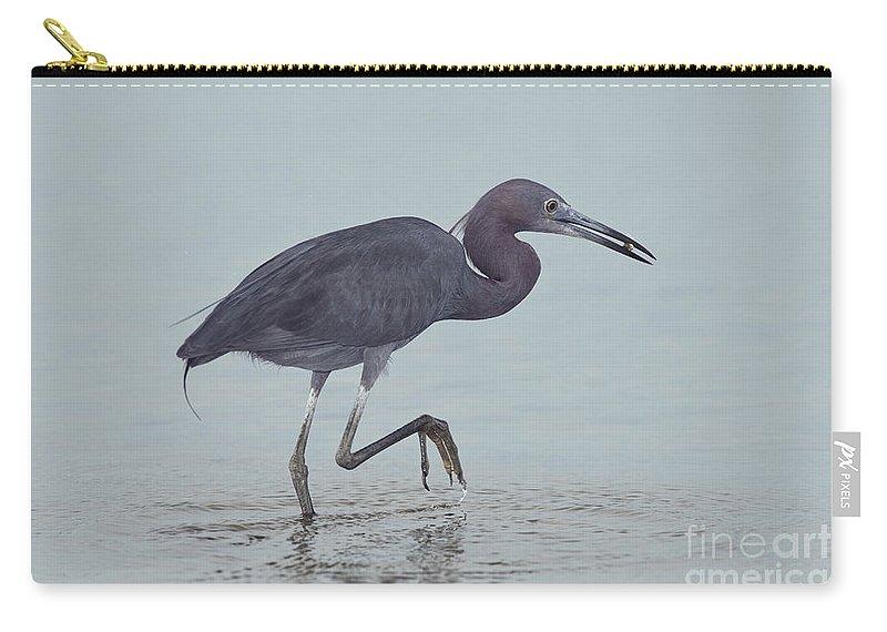 Little Blue Heron Carry-all Pouch featuring the photograph Little Blue Heron by Anthony Mercieca
