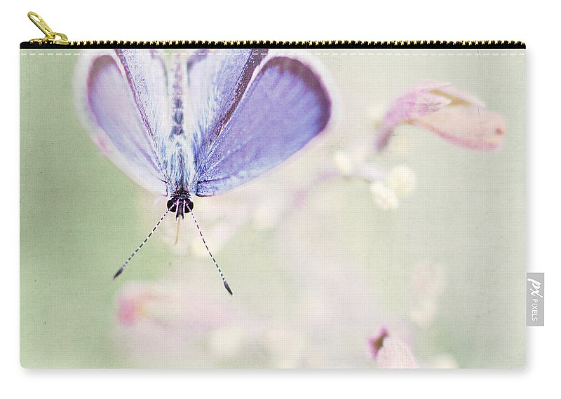 Butterfly Carry-all Pouch featuring the photograph Little Blue by Pam Holdsworth