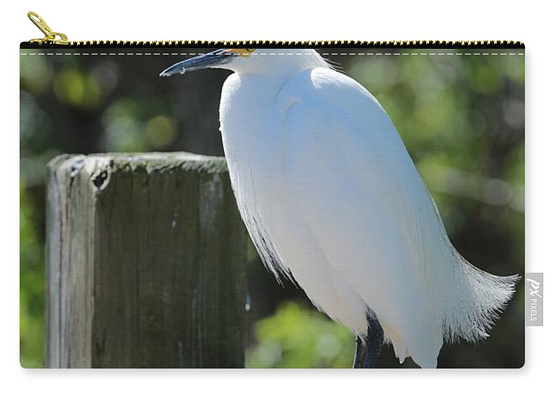 Egret Carry-all Pouch featuring the photograph Little Egret On The Boardwalk by Carol Groenen