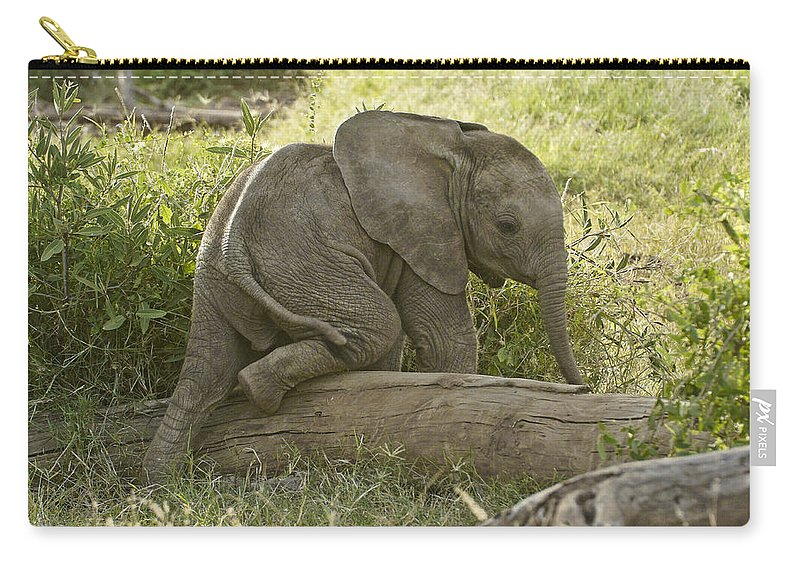 Africa Carry-all Pouch featuring the photograph Little Elephant Big Log by Michele Burgess