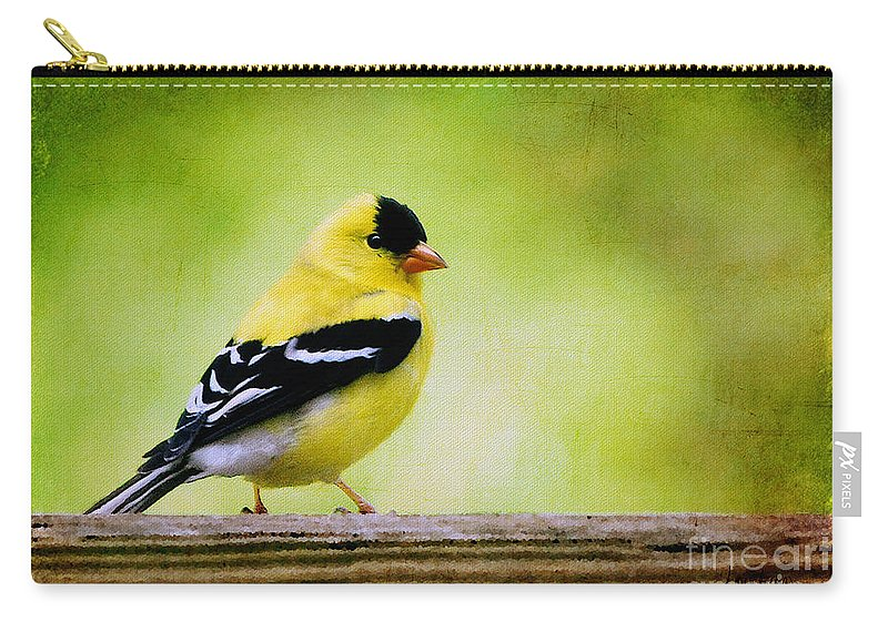 Goldfinch Carry-all Pouch featuring the photograph Little Sir by Lois Bryan