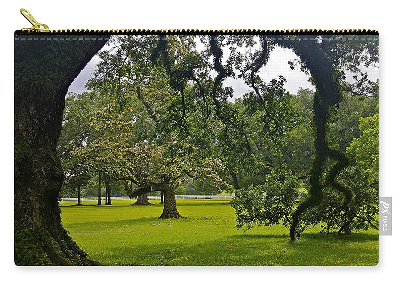 Tree Carry-all Pouch featuring the photograph Live Oak Tree At Oak Alley Plantation by Denise Mazzocco
