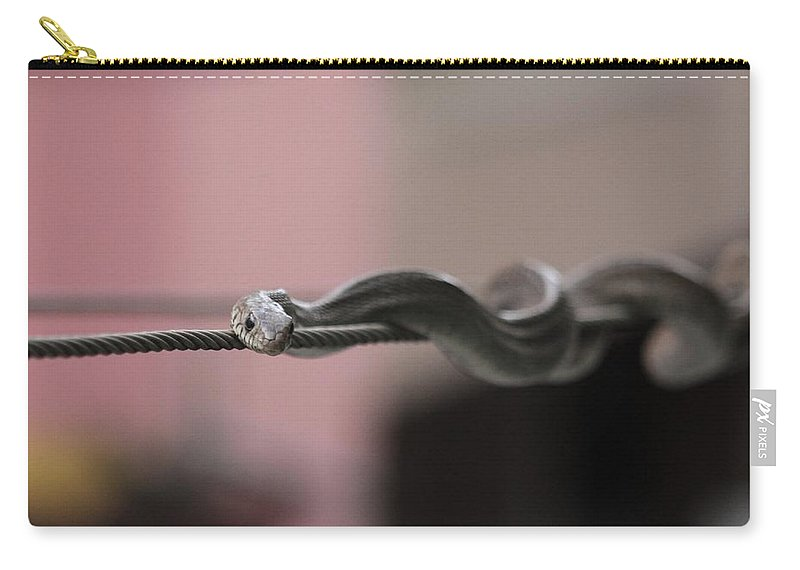 Snake Carry-all Pouch featuring the photograph Live Wire - Rat Snake On Electric Wire by Ramabhadran Thirupattur
