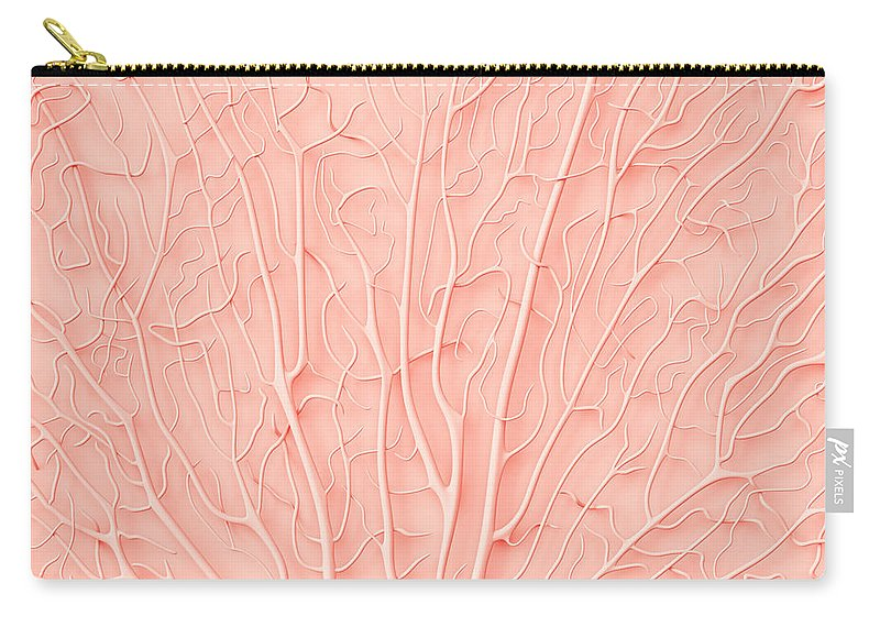 Empty Carry-all Pouch featuring the photograph Living Coral Color Of The Year 2019 by Artjafara