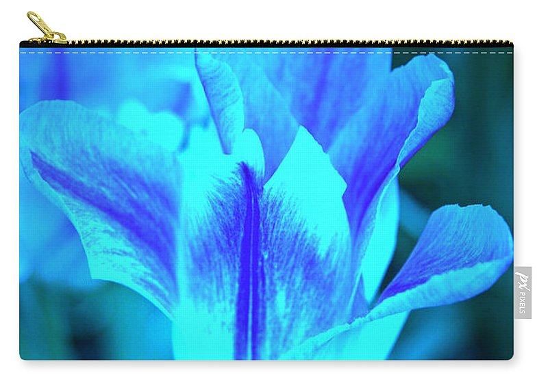 Tulip Carry-all Pouch featuring the photograph Living Glow by Lali Kacharava