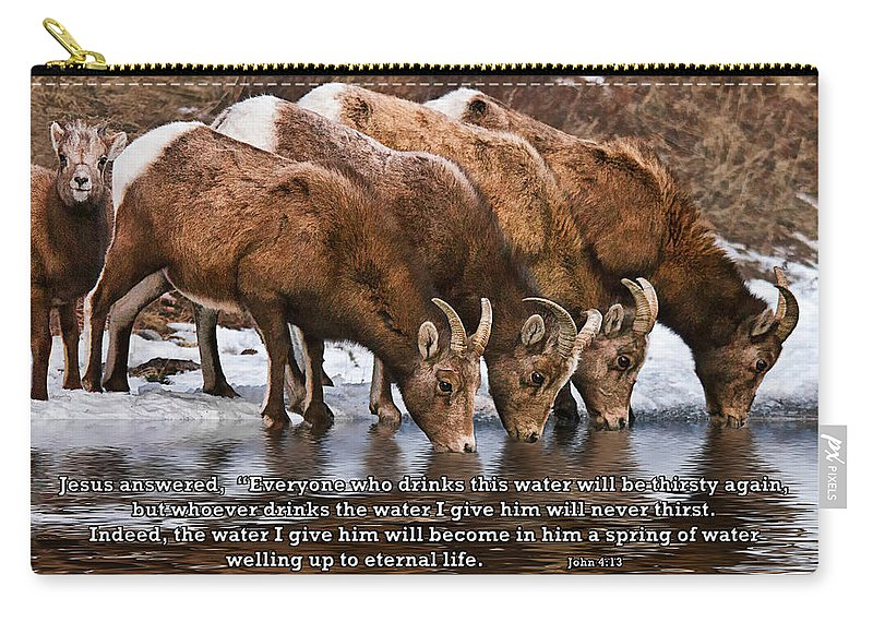 Rocky Mountain Bighorn Sheep Carry-all Pouch featuring the photograph Living Water by Priscilla Burgers