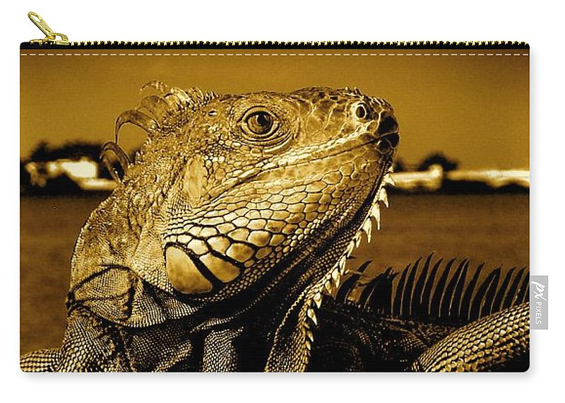 Lizard Print Carry-all Pouch featuring the photograph Lizard Sunbathing In Miami II by Monique's Fine Art