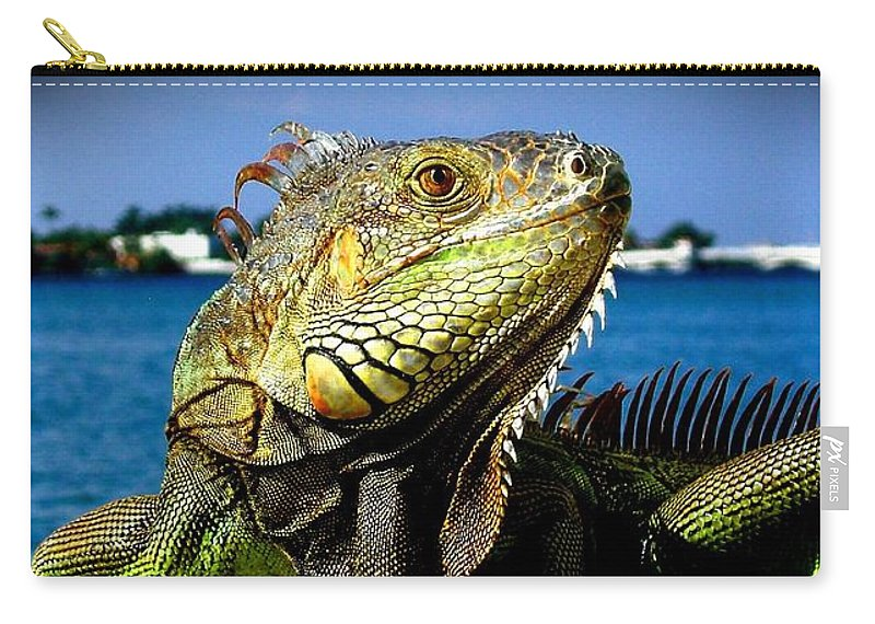 Lizard Print Carry-all Pouch featuring the photograph Lizard Sunbathing In Miami by Monique's Fine Art