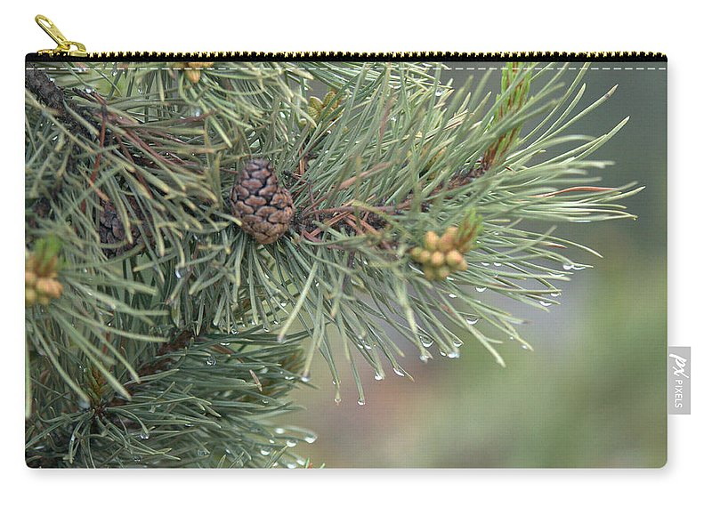 Pine Carry-all Pouch featuring the photograph Lodge Pole Pine in the Fog by Frank Madia