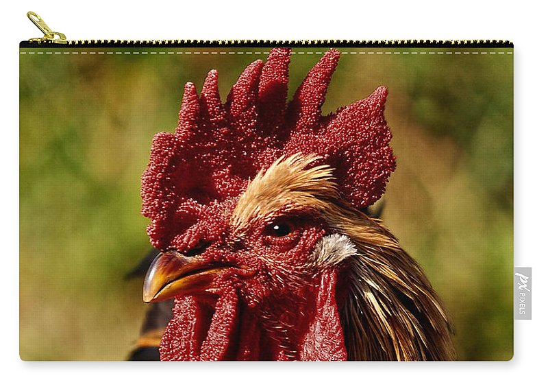 Rooster Carry-all Pouch featuring the photograph Lone Farm Rooster Portrait by Timothy Flanigan