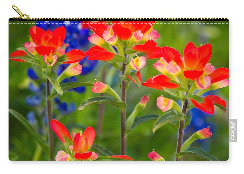 America Carry-all Pouch featuring the photograph Lone Star Blooms by Inge Johnsson