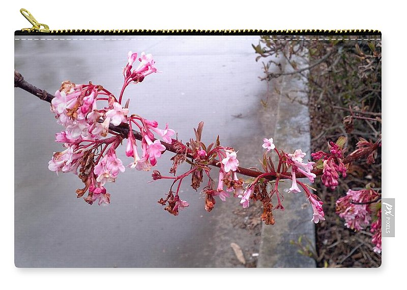Flower Carry-all Pouch featuring the photograph Long Branch by Image-in Photoart