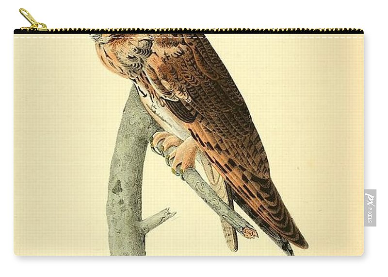 Audubon Carry-all Pouch featuring the painting Long Eared Owl by Philip Ralley