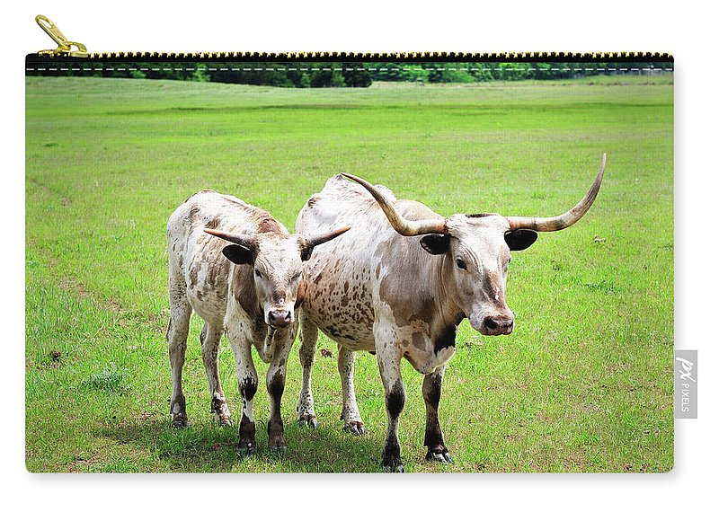 Texas Longhorn Cattle Carry-all Pouch featuring the photograph Longhorns by Betty LaRue