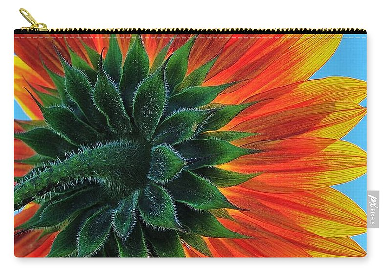 Sunflower Carry-all Pouch featuring the photograph Longing For Summer by Benjamin Yeager