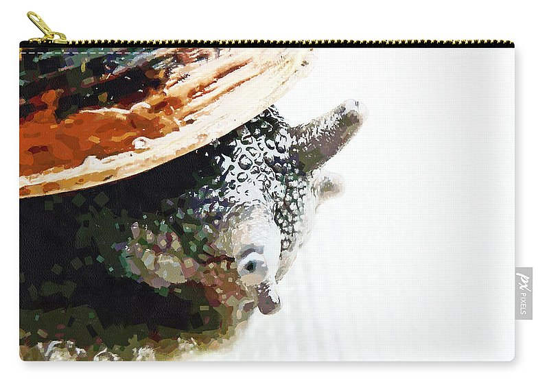Snail Carry-all Pouch featuring the photograph Look Both Ways When Crossing by Steve Taylor