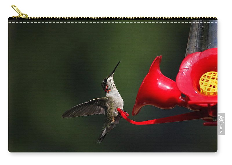 Birds Carry-all Pouch featuring the photograph Look Out 3 by Reid Callaway