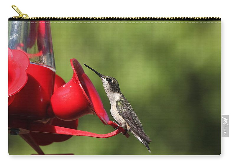 Birds Carry-all Pouch featuring the photograph Look Out by Reid Callaway