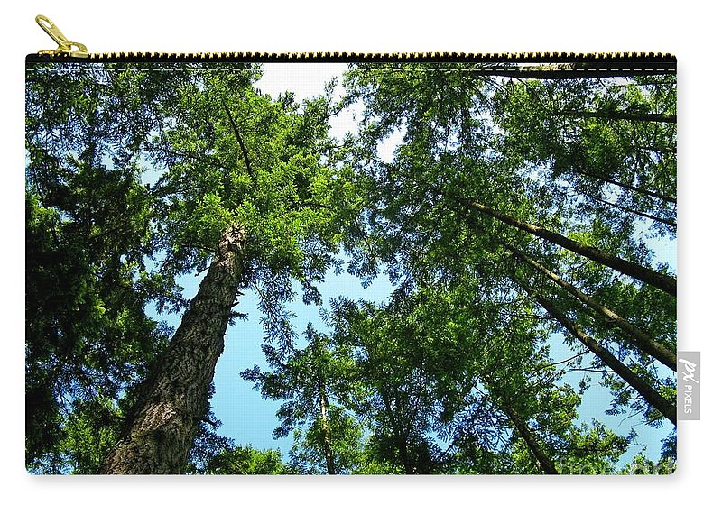 Tree Carry-all Pouch featuring the photograph Look Up by Lena Photo Art