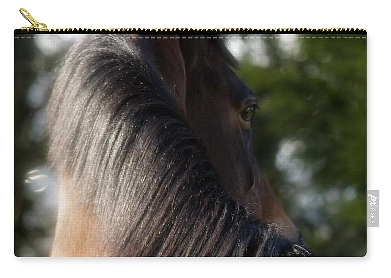 Horse Carry-all Pouch featuring the photograph Looking Back by Angel Tarantella