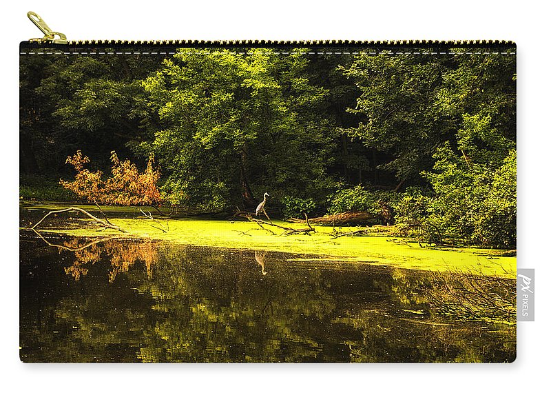 Looking For Breakfast Carry-all Pouch featuring the photograph Looking For Breakfast by Thomas Woolworth