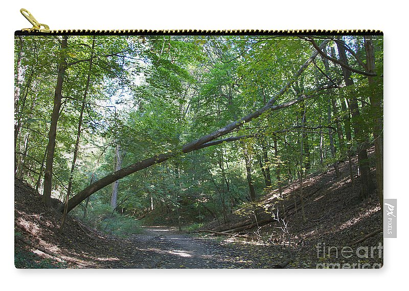 Forset Carry-all Pouch featuring the photograph Looking For Sunlight by William Norton