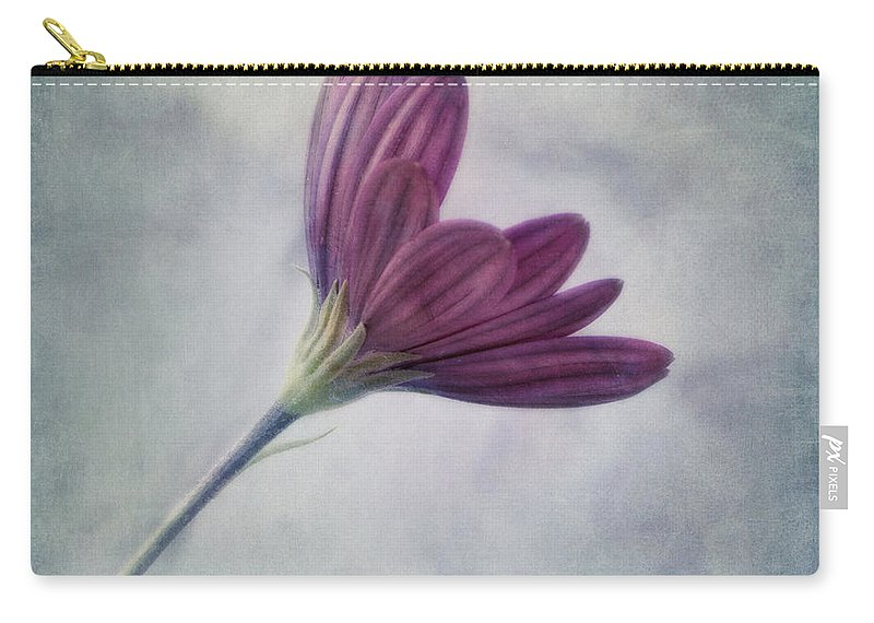 Daisy Carry-all Pouch featuring the photograph Looking For You by Priska Wettstein