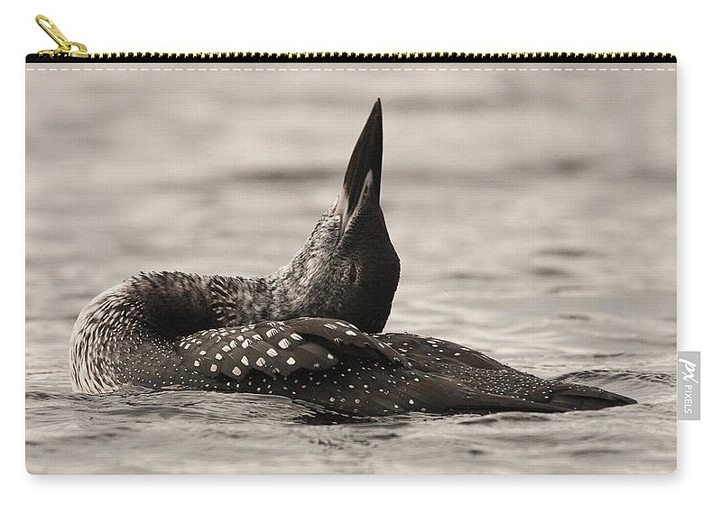 Loon Carry-all Pouch featuring the photograph Loon Yoga by Brent L Ander
