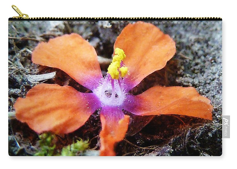 Fallen Carry-all Pouch featuring the photograph Lost Adhesion by Steve Taylor