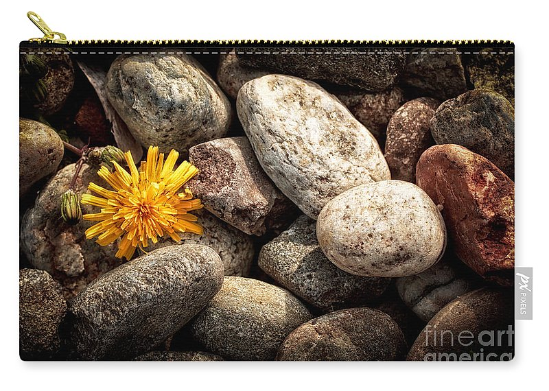 Abandoned Carry-all Pouch featuring the photograph Lost by Silvia Ganora