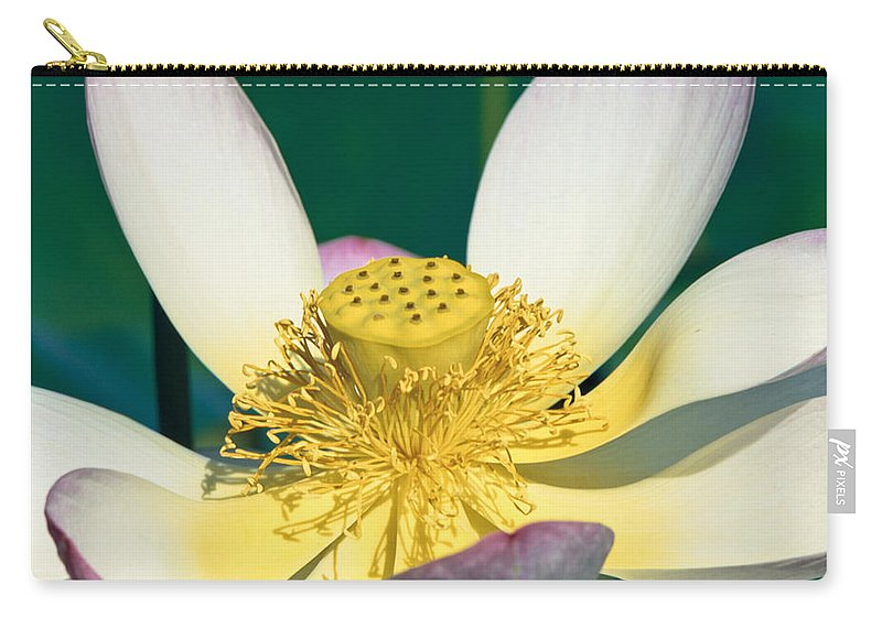 Lotus Carry-all Pouch featuring the photograph Lotus Blossom by Heiko Koehrer-Wagner