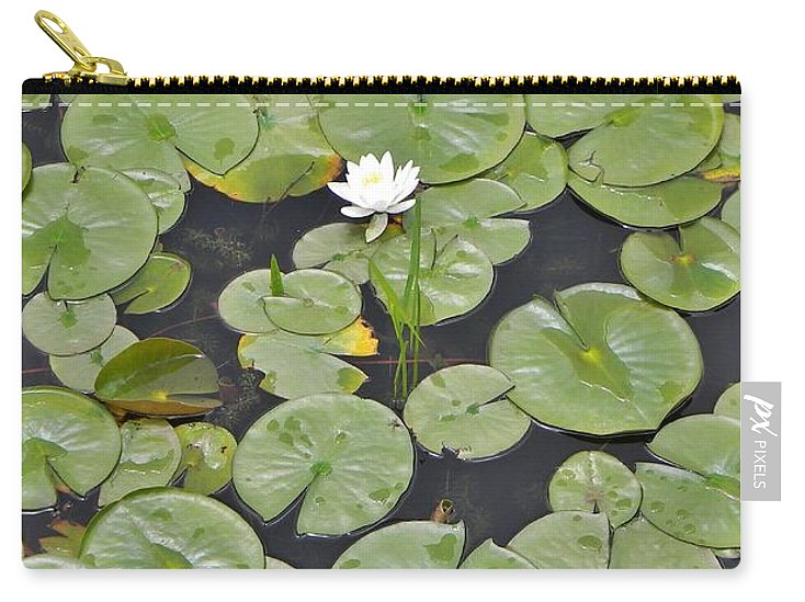 Lotus Pads Carry-all Pouch featuring the photograph Lotus Pads by Jean Goodwin Brooks